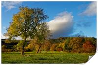 Hope Valley in Autumn                             , Print