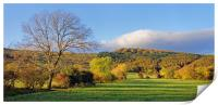 Hope Valley during Autumn                         , Print