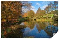 Bentley Brook Pond In Autumn                    , Print
