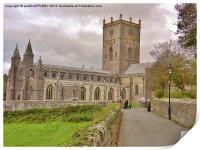 St Davids Cathedral Pembrokeshire, Print