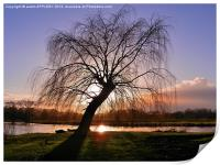 WINTER SUNSET RIVER AVON SALISBURY, Print