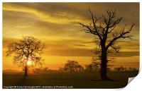 A Norfolk Sunrise, Print
