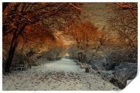 Winter Colour, Print