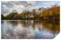 Mosshouse Wood Reservoir, Print