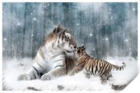 Kaiser Katrina and the Kiss Tiger Canvas Print, Print