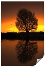 winter reflections, Print