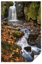 Lumsdale Falls Near Matlock                    , Print