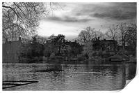 Lake in Aboretum park.., Print