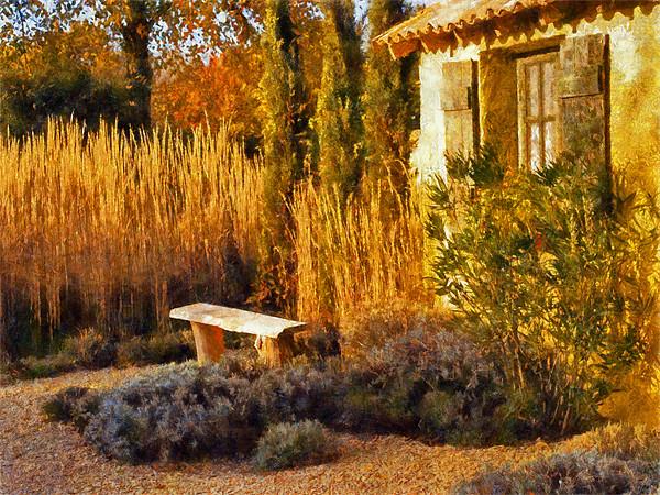 Le Jardin de Vincent 2, Wood Print